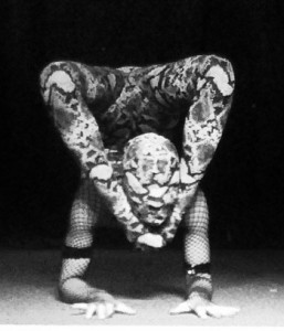 contortion snake